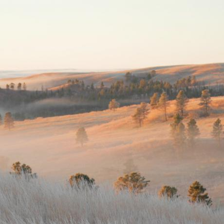 Fog over the rolling hills of South Dakota