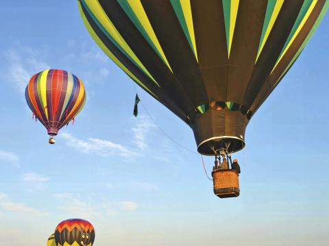 Soaring high at the Hot Air Balloon Festival