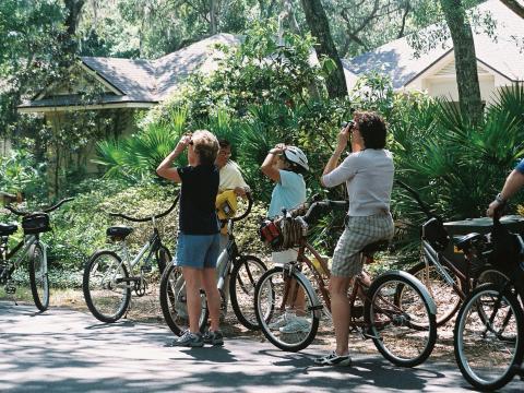 Wildlife watching tour via bicycle during the Wild Amelia Nature Festival in Amelia Island, Florida