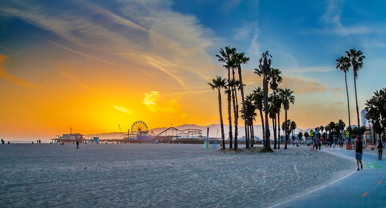 California Beach Palm Street